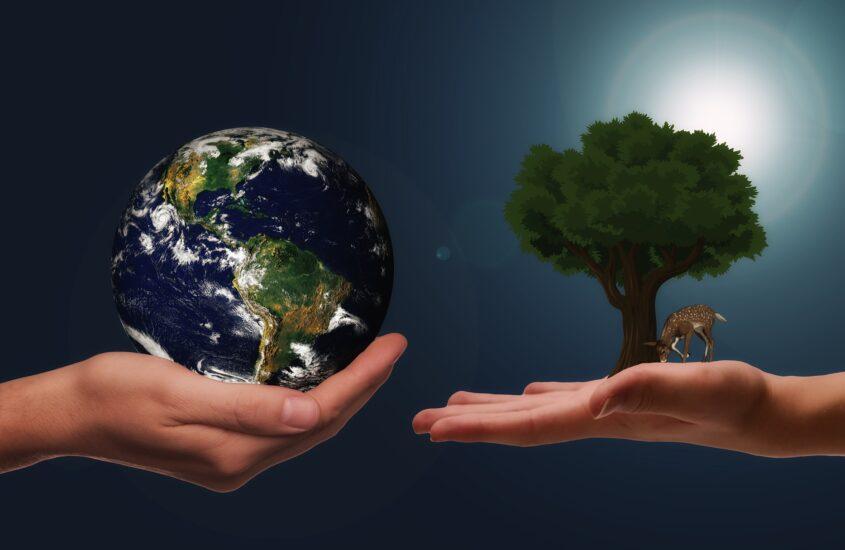 El sector logístico ante el reto del cambio climatico